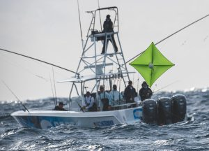 Jimmy Johnson Billfish Classic Pictures and Video