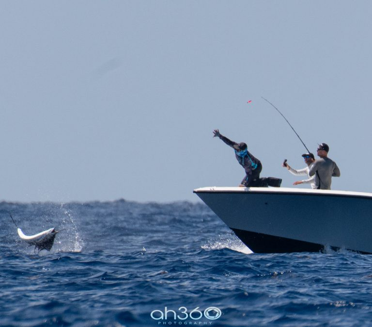 Catching-Sailfish-on-Seavee-Center-Console-Boat