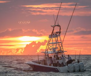 AH360 Photography-Professional Boat-Yacht-And-Fishing-Photographer in Florida
