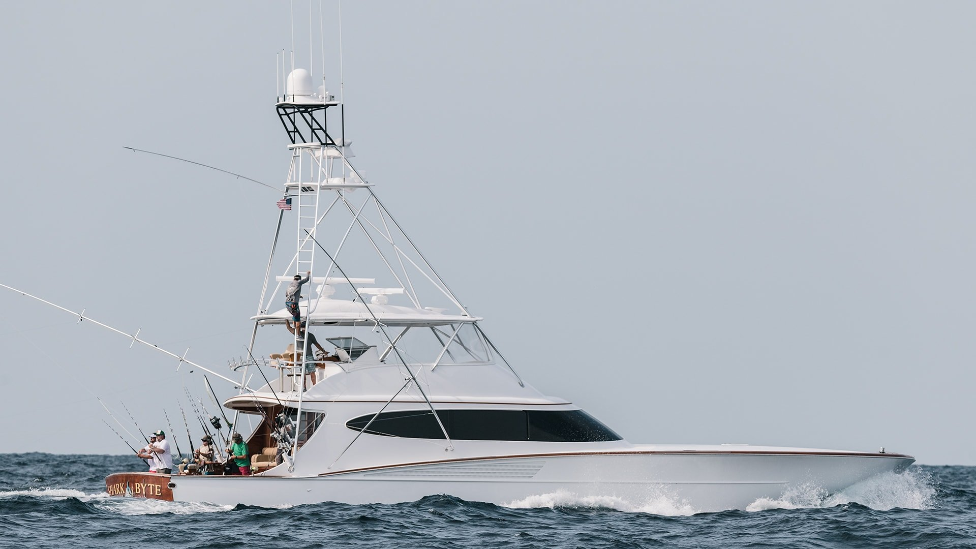 Bayliss Sportfishing Boat Shark Byte