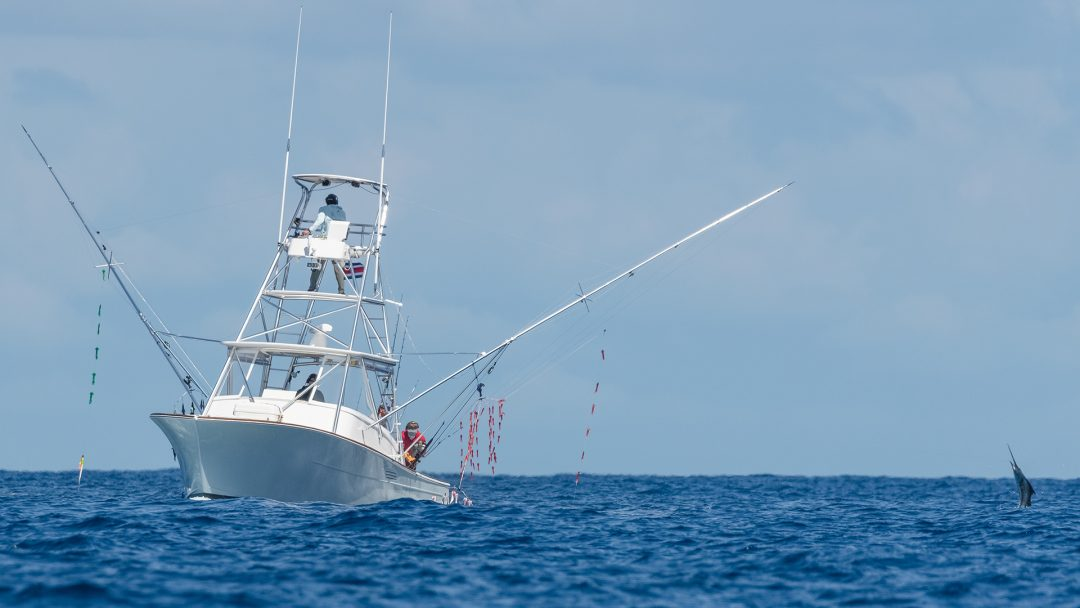 Fishermen Catching Sailfish Costa Rica